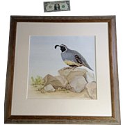 PriscillaBaldwin, California Quail Photorealism Watercolor Painting Works on Paper Signed By Nature Artist