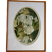 Henrietta, Gorgeous White Rose Flowers Watercolor Painting Works on Paper Signed by Artist Art