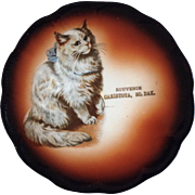 Antique Taylor Smith Taylor Mark 1908-1915 Cat China Collectible Souvenir Plate Canistota, South Dakota