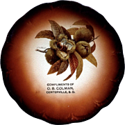 Antique Taylor Smith Taylor Mark 1908-1915 Seed Pod By R.K. Beck China Collectible Souvenir Plate Centerville, South Dakota