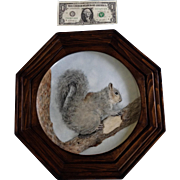 Gray Squirrel Painting on Porcelain Hand Painted Signed by Artist in Octagon Wood Frame
