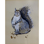Stephens, Squirrel Watercolor & Ink Works on Paper 1973 Signed By Artist