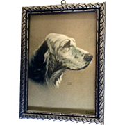 Alpnarly Lyster, Beautiful 1938 Litho Print of English Setter Hunting Dog in Old Frame