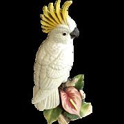 Rare Vintage Andrea by Sadek White Sulphur-Cockatoo Bird with Alani Anthurium Flower Porcelain Figurine 9771 Discontinued