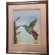 Humming Bird Watercolor painting Works on Paper Signed Norm