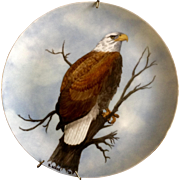 Bald Eagle Hand Painted Porcelain Plate Signed by Artist B Acker 1979