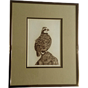 Artist Proof The Lookout, Bird on Pole, Etching Print Signed by Artist