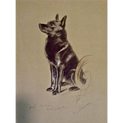1930's-1940's Lucy Dawson, Schipperke Named Peter Framed Print from the Book, Dogs Rough And Smooth