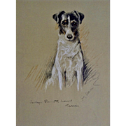 1930's-1940's Lucy Dawson, Smooth Haired Terrier Named Judy Framed Print from the Book, Dogs Rough And Smooth
