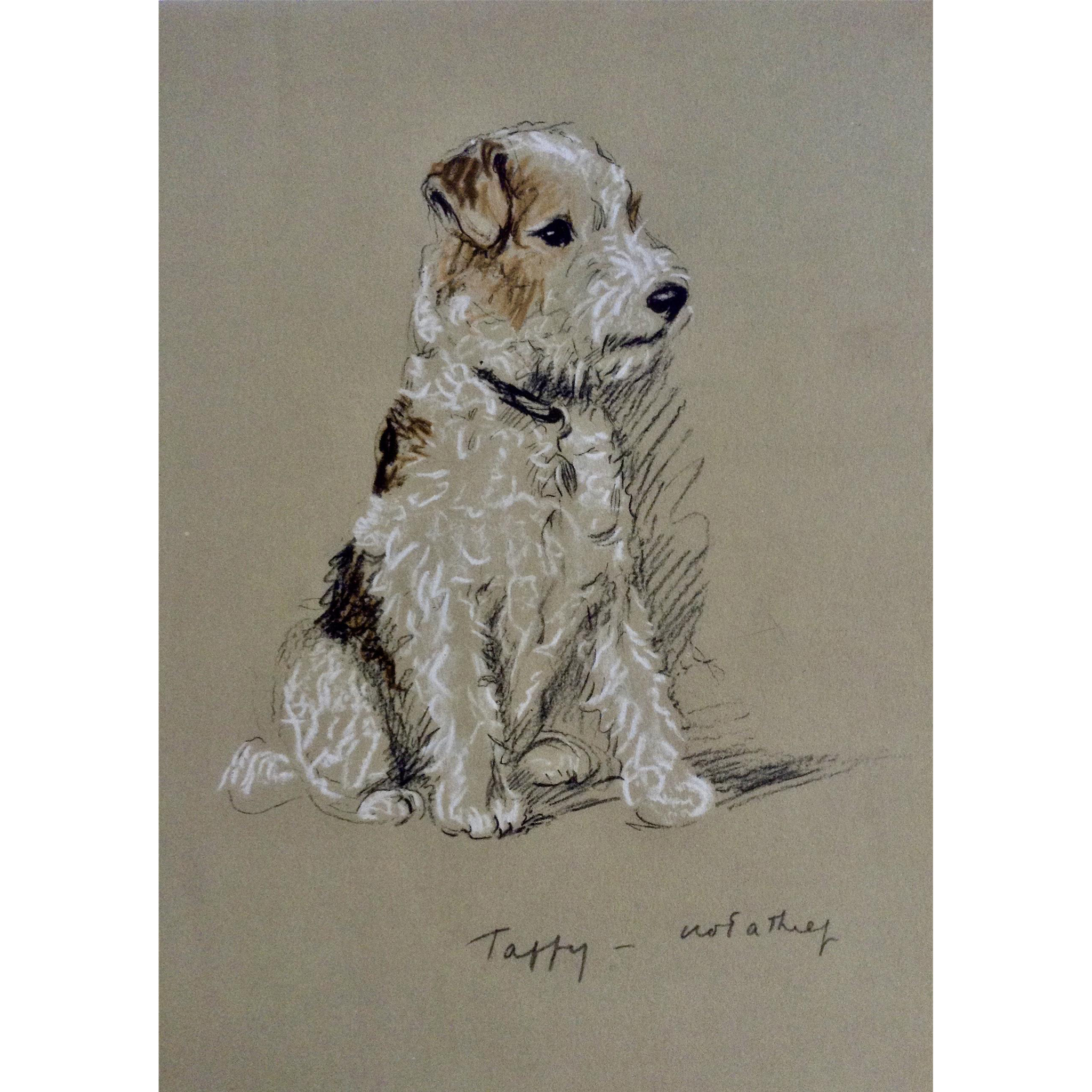 1930's-1940's Lucy Dawson, Wire Haired Terrier Named Taffy ...