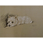 1930's-1940's Lucy Dawson, West Highland Terrier Named Timothy White Framed Print from the Book, Dogs Rough And Smooth