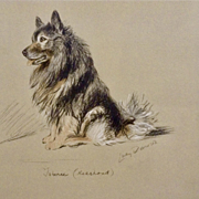 1930's-1940's Lucy Dawson, Keeshond Named Johnnie Framed Print from the Book, Dogs Rough And Smooth