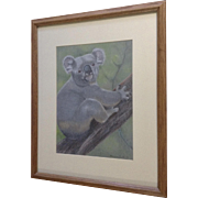 Eleanor Cook, Koala Bear in a Tree, Conte Works on Paper Signed by Artist