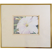 D. Komter, Pink Hibiscus Flower, Original Works on Paper Colored Pencil Drawing, Signed by Artist