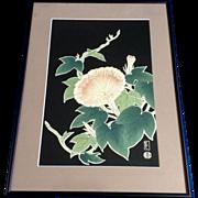 Hanmoto Uchida, Pink Morning Glory Flower Japanese Woodblock Print Signed by Artist Monogramed Stamp