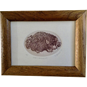 Marsha K Howe, Etching, Baby Hedgehog, Artist Proof Limited Edition Print, Signed by Listed Artist