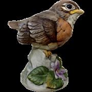 Andrea by Sadek Red Robin Bird Ceramic Figurine Japan 6350