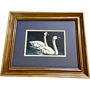 Clark Sullivan Waterfowl White Swans on a Lake Oil Painting Signed by Artist