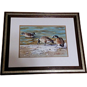 "Joseph Bohler AWS, Original Watercolor Painting Works on Paper Signed by Listed Artist, "" Lake Woodmoor - Nov, 1980"" Geese at Winter Thaw"