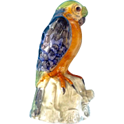 Italy Bird Parrot Vintage Glazed Porcelain Hand Painted Ceramic Animal Figurine Made in Italy
