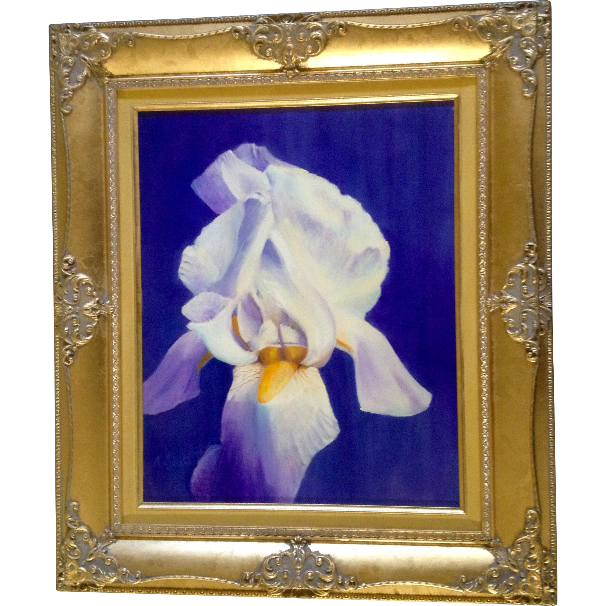 John Arguello Violet and White Iris Flower Original Oil painting on from gu