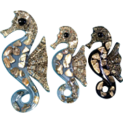 Wall Plaques Seahorses Lucite & Abalone Shell / Hangings Mid-Century Vintage Retro Set 3