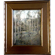"Harry Landis Standley (1881-1951), Photograph, Colorado ""THE ASPENS"" 1930,  Colorado Artist, Silver Gelatin, Hand Tinted Picture"