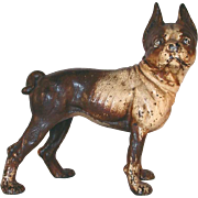 Old Cast Iron Doorstop Brown and Cream Painted Full Figure Boston Terrier By Hubley