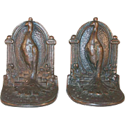 Early 20th Century Bronzed Cast Iron Bookends Peacock Standing on Steps