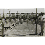 RPPC, ca.1905, day's catch fishing, Marble Falls, Texas.