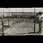 RPPC, ca.1905, day's catch fishing, Marble Falls, Texas.