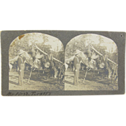 1900 Turkey hunter cowboy, TEXAS - antique stereoview