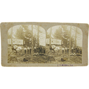 1900 logging camp, Milles, mobile home, draft horses, antique stereoview