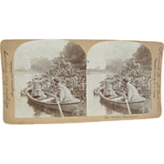 1899 Antique stereoview by Lingley, MOOSE hunting from a canoe