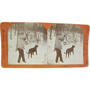 1895 Bird hunting, retreiver dog,  - antique stereoview by Lingley