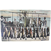 RPPC 1916 Fishing, Day's Catch, Palatka Florida, color postcard