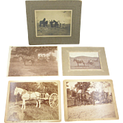 1890-1920's =Collection of 5= horse & buggy photographs