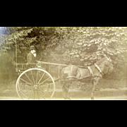 "=RARE= ca.1890's 2-wheeled horse-drawn carriage, ""dogcart"""