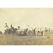 =RARE= farm machinery, hay making, horse-drawn, ca.1890's