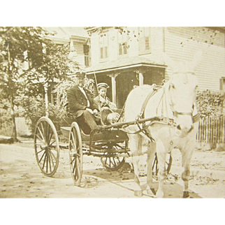 =RARE= ca.1915 fire chief, siren mounted in buggy, white horse-drawn
