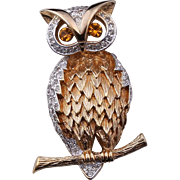 PANETTA Wise Old Owl Figural Pin/Brooch