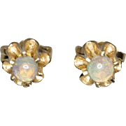 14K Yellow Gold | Opal Stud Earrings | Buttercup Mounting
