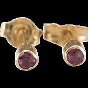 14K Yellow Gold   Petite Ruby Stud Earrings