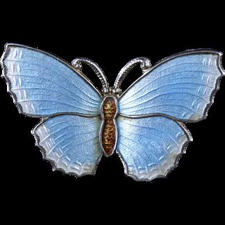 Antique Victorian Enamel Butterfly Brooch Silver Duck Egg Blue