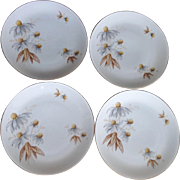 Rosenthal Thomas Coneflowers Set Of Four Bread Plates