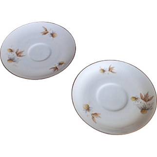 Rosenthal Thomas Coneflowers Saucers Set Of Two