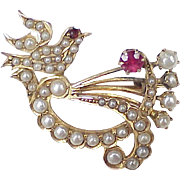 Victorian Era Jeweled Dove Brooch 14k Gold Seed Pearl, Ruby & Garnet