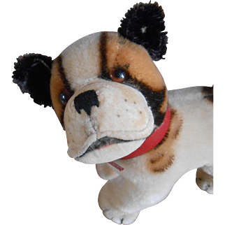 "****Original STEIFF ""BULLY"" English Bulldog approx 1959-1967***"