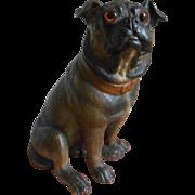 **Fantastic stoneware Bulldog approx 1900***glass large eyes....