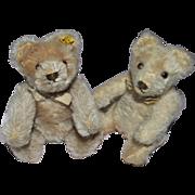 218 - Two Steiff Teddys